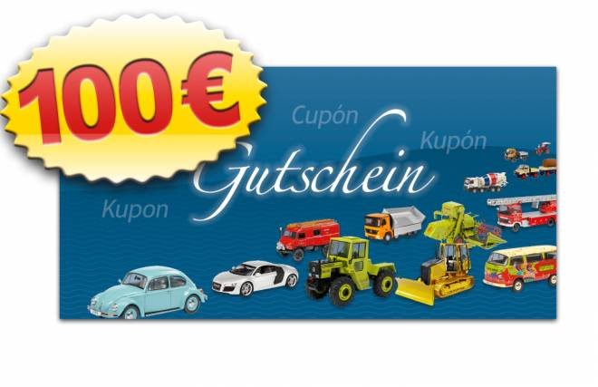 MSW-Gutschein 100 