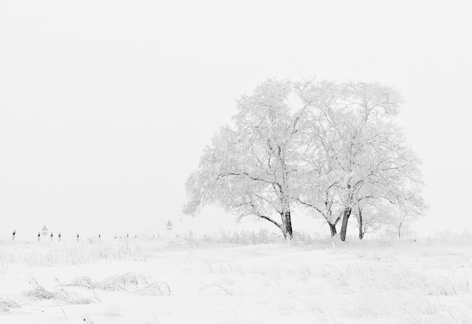 Öffnungszeiten Winter