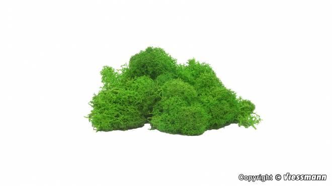 Moos hellgrün, 40 g